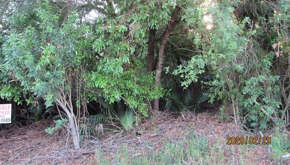 MLS# 220016857 Property Photo
