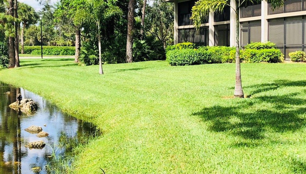 MLS# 220063822 Property Photo
